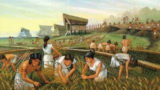 Asya Tipi Üretim Tarzı